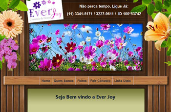 Ever Joy Flores Artificiais
